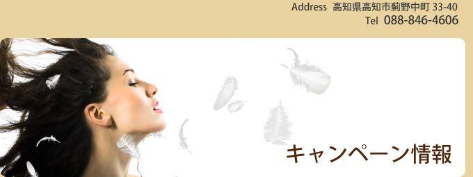 高知市 美容室 『オーパーツ(O-PARTS)』 キャンペーン情報